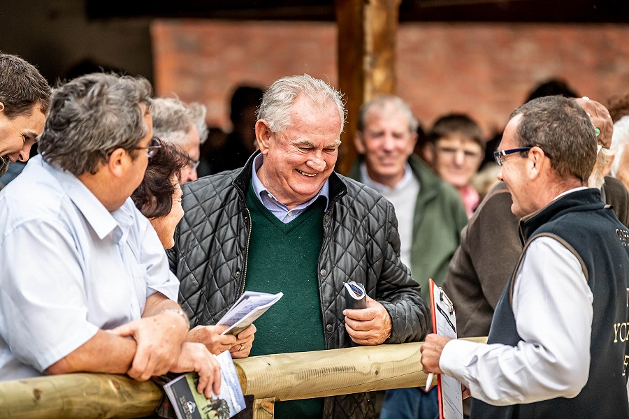 Select line-up of 48 youngsters chosen for second Yorton Sale