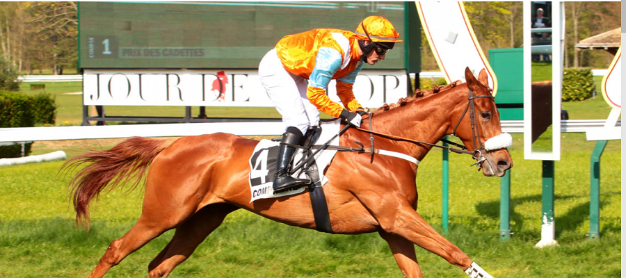 One to watch - La Islaminima (Gentlewave) makes an impressive start at Compiegne