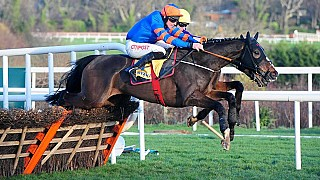 Mick Jazz (Blue Bresil) hits the right note in the Ryanair Hurdle Gr1
