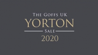 Goffs UK Yorton Sale - Youngstock for 2020 Sale and highlights from last year.